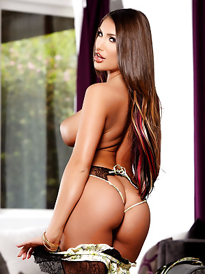 metartmoney  August Ames  Erotic, Softcore